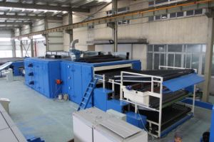 Spray-Bonded Waddings Oven Machinery (YYH) pictures & photos