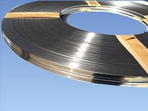 Stainless Steel Strips and Coils pictures & photos