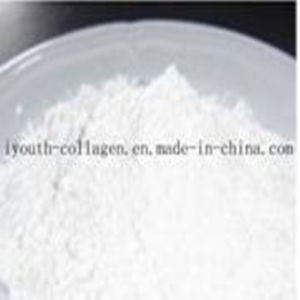 Food Additives, Zinc Gluconate, Food pictures & photos