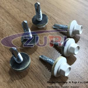 Roofing Screw 5.5X25 Ral 9001 pictures & photos