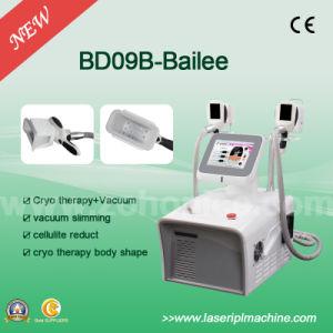 Exporter Cryo Cellulite Slimming Machine pictures & photos