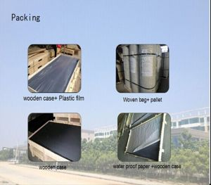 Colored Window Screen Netting/Magnetic Insect Screen Window/Anti-Theft Window Screen pictures & photos