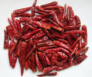 New Crop Dry Red Chilli of Vegetable pictures & photos