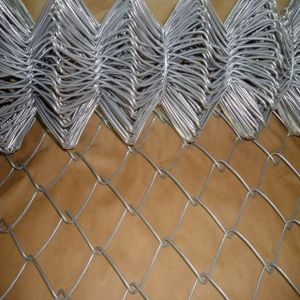 Wire Netting Galvanized Chain Link Fence pictures & photos