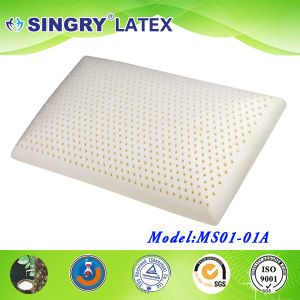 Latex Stand Pillow