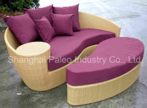 Rattan Garden Patio Outdoor Wicker Lounge (PAL-6108)
