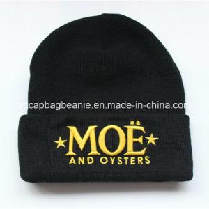 Winter Beanie Hat, Warm Hat, pictures & photos