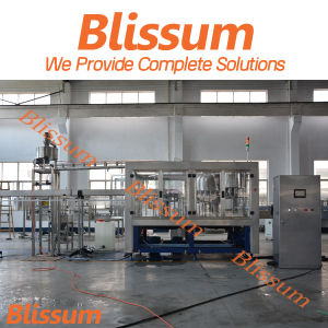 Automatic Bottled Liquid Filling Machine/Machinery/Line/Plant/System/Equipment pictures & photos