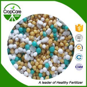 Best Price High Quality Bulk Blending Compound NPK Bb Fertilizer pictures & photos