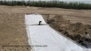 Road Geotextile with High Quality pictures & photos