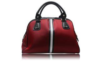 Leather Ladies Handbag (CA-H001) pictures & photos