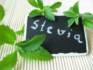 Natural Sweetner GMP Standard Stevioside Stevia pictures & photos