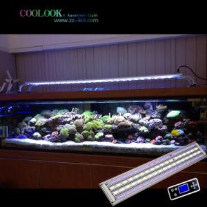 Programmable LED Ornamental Fish Light, Ornamental Coral Light (SI4SSR150)