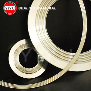 Corrugated Gasket pictures & photos