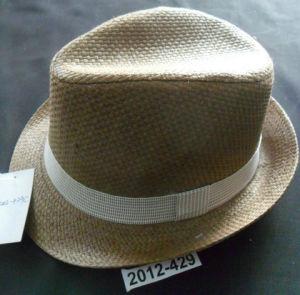 fedora hat pictures & photos