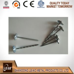 China Umbrella Roofing Nail pictures & photos