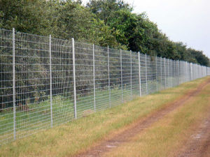 Forest Edge Fencing pictures & photos