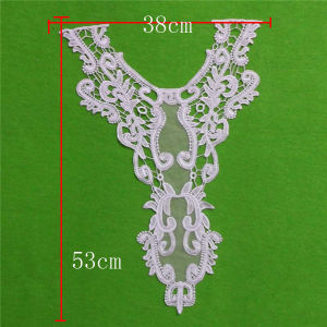 Garment Decorative Chemical Lace Collar (cn137) pictures & photos