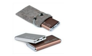 Power Bank with Bi-Color Injection Mold, Lithium-Polymer Battery/Dual USB Output pictures & photos