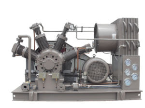High Pressure Freon Compressor Carbon Dioxide Compressor (ZW-10/4-30CE Approval) pictures & photos