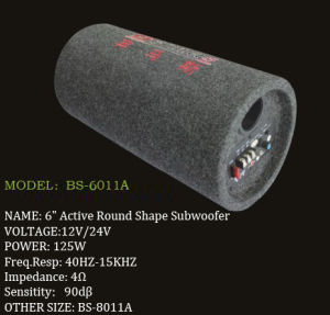 Subwoofer Car Audio (BS-6011A)