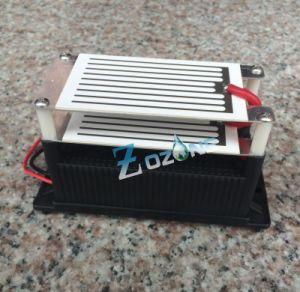 New Design! 7g Ozone Generator with Plate pictures & photos