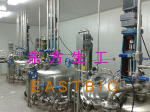 Production-Scale Stainless Steel Plant Fermentor pictures & photos