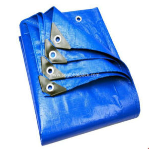 Shandong Manufacturer PE Plastic Blue Tarp Sheet with UV pictures & photos