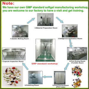 Automatic Soft Capsule Filling Machine pictures & photos