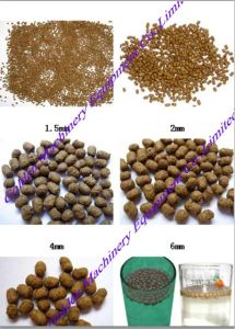 China Wet Poultry Fish Feed Pellet Granulating Granulator Machine pictures & photos
