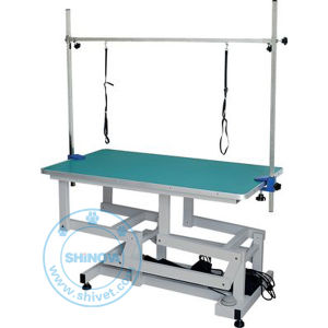 Electric Lifting Beauty Table (Foot Control) (BT-E806) pictures & photos