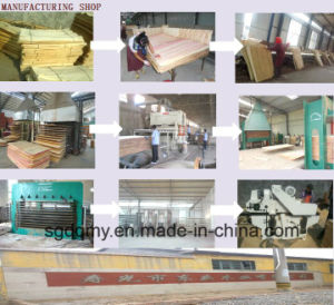 19mm Waterproof Plywood with Melame Glue for Cabinet Usage pictures & photos