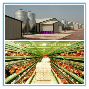 Hot Sale Light Steel Structure Prefabricated House for Layer Chicken pictures & photos