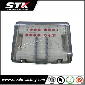 China Plastic Injection Moulding Clear Plastic Medicine Box pictures & photos