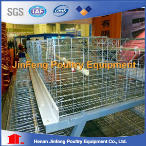 Jinfeng Chicken Cage a Type Layer Cages / H Type Chicken Cages pictures & photos