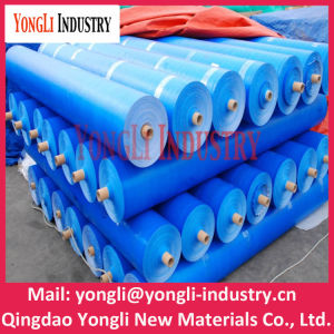 China Manufacturer Camping Tent Blue PE Tarpaulin Packed in Rolls pictures & photos