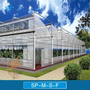 Sp-M-S-F Serrated Multi-Span Plastic Film Greenhouse