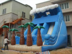Inflatable Slide, Water Slide Wave, Giant Slide (B4032) pictures & photos