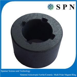 Ferrite Sintered Permanent Multipole Magnet Rings pictures & photos