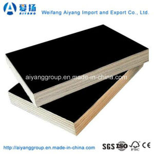 Construction Grade Film Faced Plywood with Best Price pictures & photos
