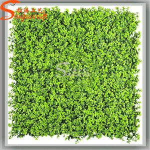 Decoration Artificial Fake PE Synthetic Green Grass pictures & photos