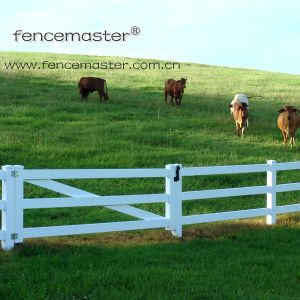 Farm Fencing pictures & photos