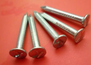 Hot Sale Concrete Nails From Chinese Professional Factory pictures & photos