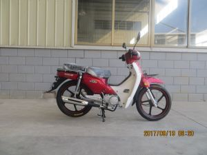 100cc New Cub Morocco Becane/Benelli C100 Moto / Motorcycle (SL100-C1) pictures & photos