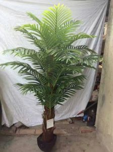 High Quality Artificial Plants of Palm Tree F03302210 pictures & photos