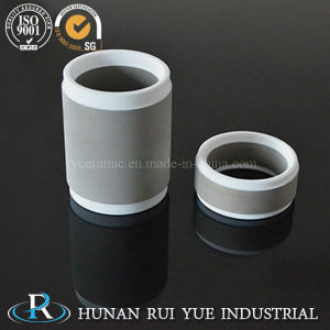 High Purity Metallized Ceramic Ring pictures & photos