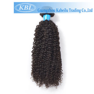 New Arrival Style Brazilian Remy Human Kinky Curly Hair Extension pictures & photos