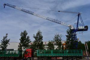 Different Custom Model Tower Crane