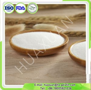 Pharmaceutical Grade Hydrolyzed Fish Collagen Powder with 90% Protein Offered by Collagen Manufacturer pictures & photos