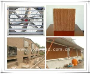 Poultry Farm Equipment Batteries Layer Cage with Water Feeder pictures & photos